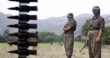 Efkan Ala, 'Terörün bitmesini HDP engelliyor'