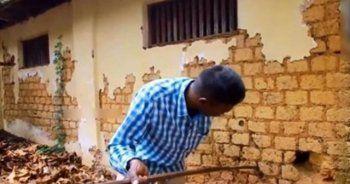 Bir evin bahçe duvarından çıkan yılan korkuttu