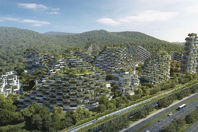 40 bin ağaçla Orman Şehri inşa edecekler