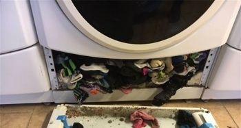 Çamaşır makinesinin içinden çıkanlar şoke etti