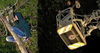 Kitap almak için tırmandığı ağaçta mahsur kaldı
