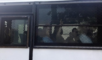 'Kedicikler' cezaevine giderken bakın ne yaptı!