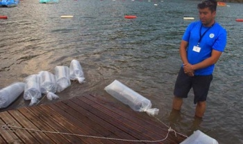 Poşet poşet getirdiler! Hepsini gölün içine bıraktılar