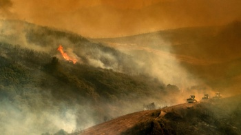 California'da orman yangını! Tarihinin en büyüğüne dönüştü...