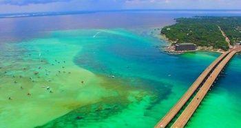 Florida'da 'zehirli algler' OHAL ilan ettirdi