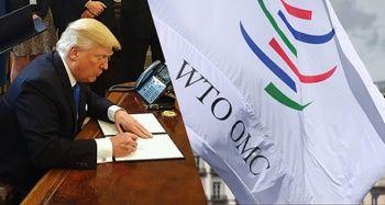 'Trump'ın tarifeleri DTÖ'yü krize sürüklüyor'