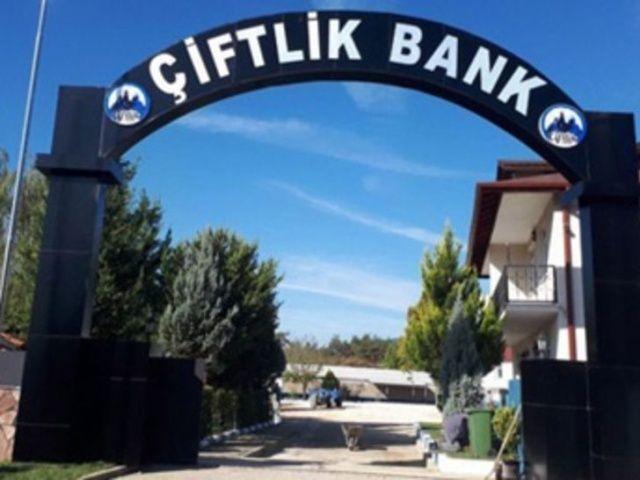 Çiftlik Bank'ın kritik ismi teslim oldu
