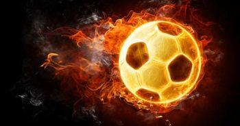 Süper Lig'de ayrılık! Safet Susic gönderildi