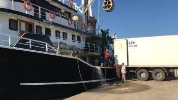 Tam 40 ton çıktı, adeta denizden fışkırdı