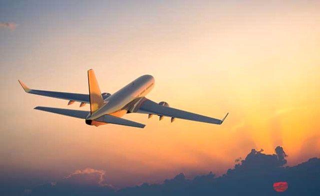 Ülkenin en büyük hava yolu şirketi iflas etti! Uçuşlar durduruldu