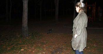Geceleri parklarda arıyor! Bulana ödül verecek…