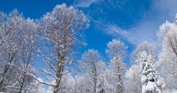 Kışın ayak sesleri! Meteoroloji tarih verdi, kar geliyor