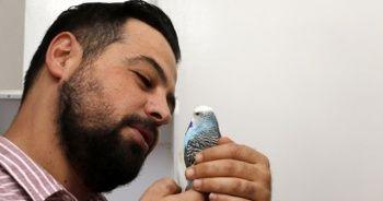 Kuşları için dubleks ev satın aldı! Öyle bir yöntem buldu ki...
