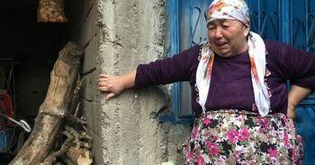 Sesi duyup dışarı koşan babaanne gözyaşlarına boğuldu!