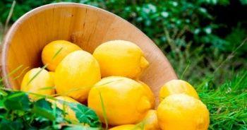 Yatak odanıza limon dilimleri koyup öyle uyuyun, bakın ne olacak!
