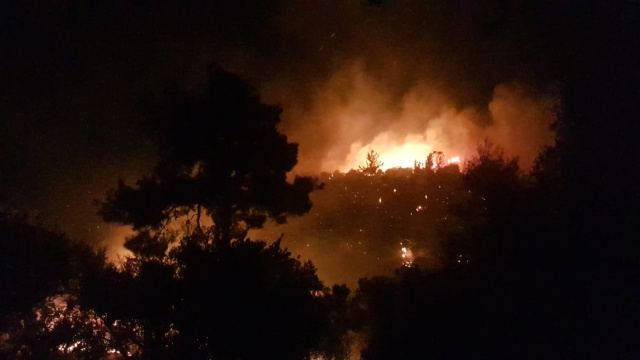 4 mahalle tehdit altında! Alev alev yanıyor