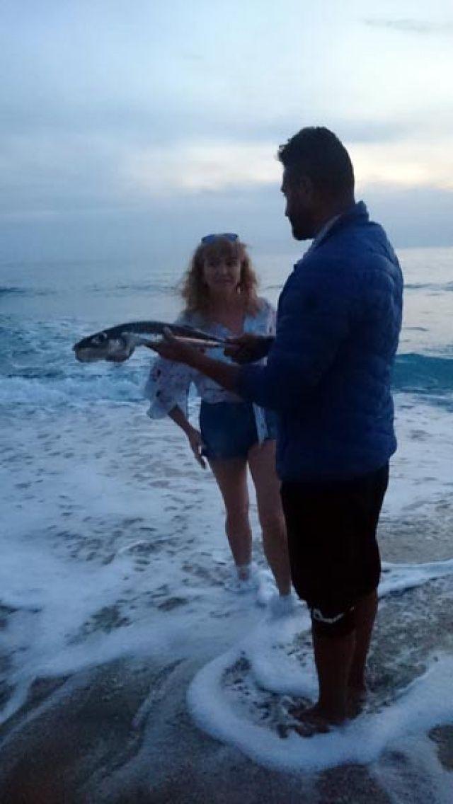 Alanya sahile vurdu! 'Siyanürden daha zehirli…'