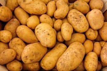 Modeminize patates takın, okuduklarınıza inanamayacaksınız!