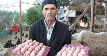 Son maaşı ile çiftlik kurdu, koli koli yumurta topluyor