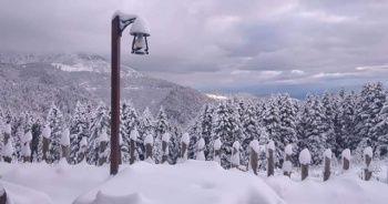 Türkiye'den kar manzaraları! Kasım ayında kar etkisini gösterdi