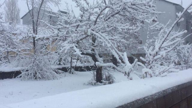 Bingöl'ün Karlıova ve Yedisu ilçeleri güne karla uyandı
