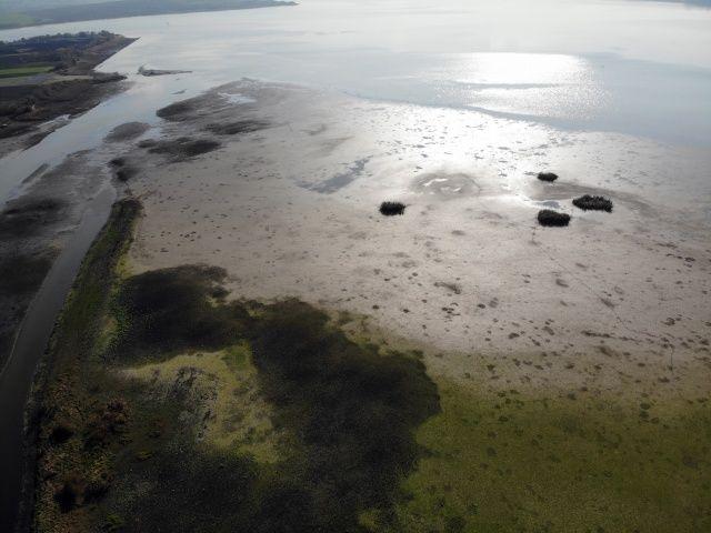 Büyükçekmece Gölü'nde sular çekildi, balçıklar ortaya çıktı