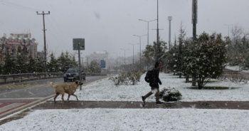 İstanbul'un yanı başı beyaza büründü!