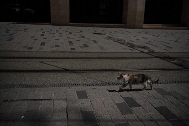 İstanbul'un boş meydanlarını fotoğraflıyor