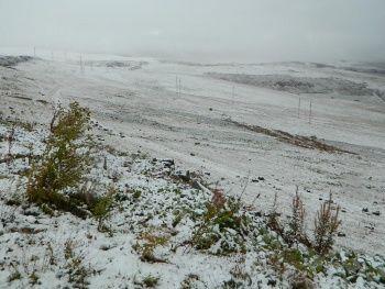 Yılın ilk kar yağışı ile beyaza büründü
