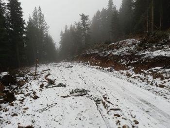 Her yer beyaza büründü! Kasım ayında kar yağdı