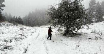 Kar kalınlığı 10 santimetreye ulaştı! Her yer beyaza büründü