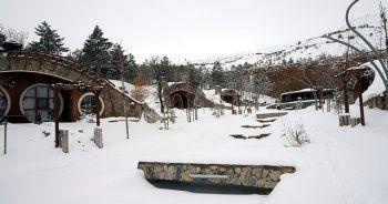 Kar altındaki