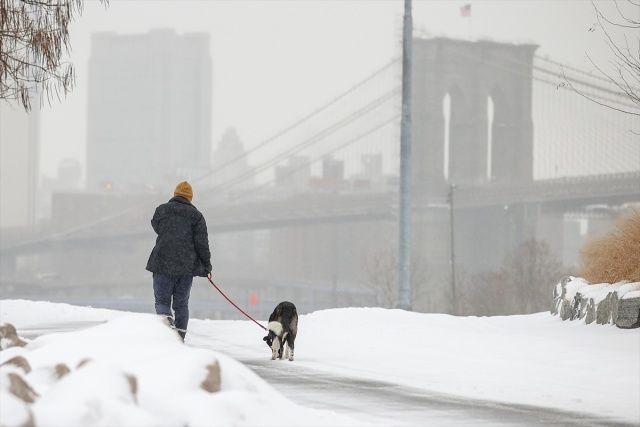 ABD'de sert kış şartları