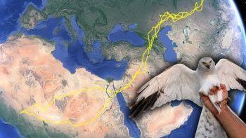 2 kıta, 13 ülke, 25 bin km yol!