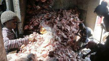 Brezilya'dan acı fotoğraflar: Hayvan leşleri arasında yemek arıyorlar