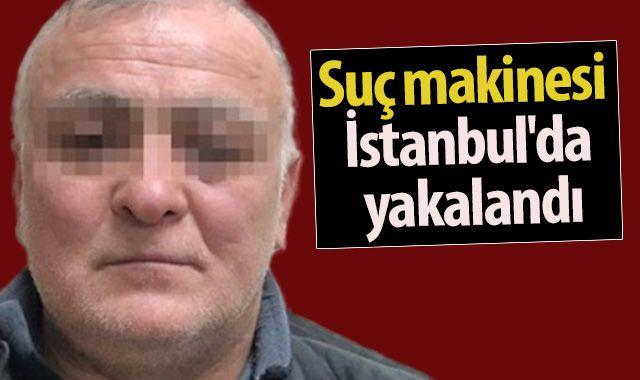 Suç makinesi İstanbul'da yakalandı!