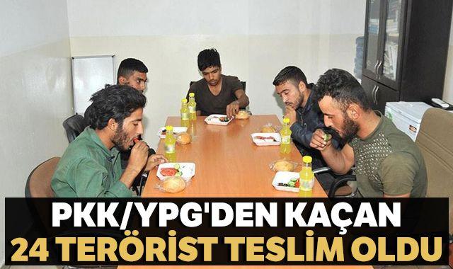 PKK/YPG'li 24 terörist güvenlik güçlerine teslim oldu