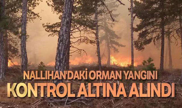 Ankara Nallıhan yangını kontrol altına alındı
