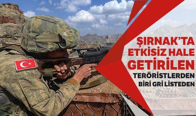 Şırnak'ta etkisiz hale getirilen teröristlerden biri gri listeden