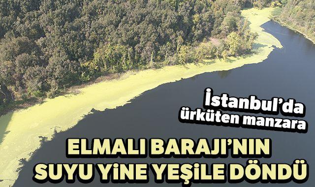 İstanbul'da ürküten manzara; Elmalı Barajı'nın suyu yine yeşile döndü
