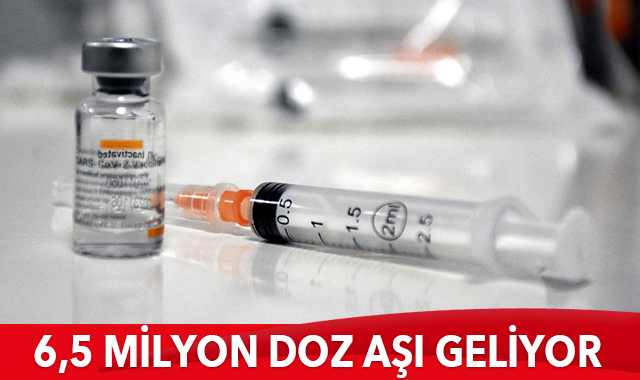 6,5 milyon doz aşı geliyor