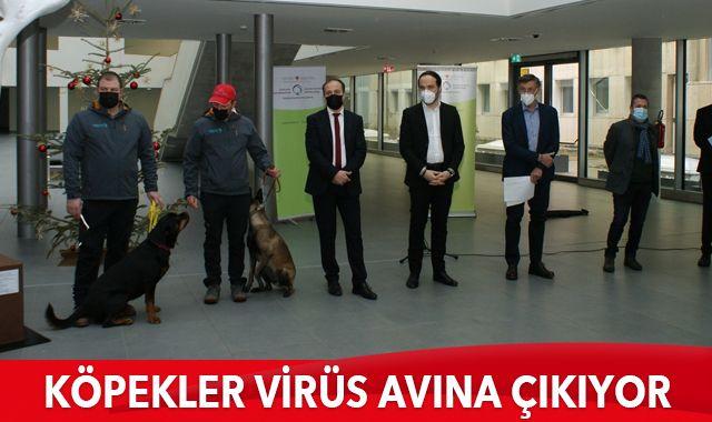 İtalya'da köpekler, okullarda Covid-19 taraması yapacak