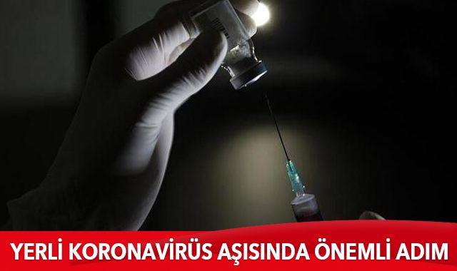 Kritik aşamaya gelindi: Covid-19 aşısında önemli adım