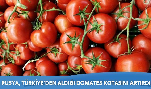 Rusya, Türkiye'den aldığı domates kotasını artırdı