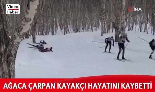 Rusya'da ağaca çarpan kayakçı hayatını kaybetti