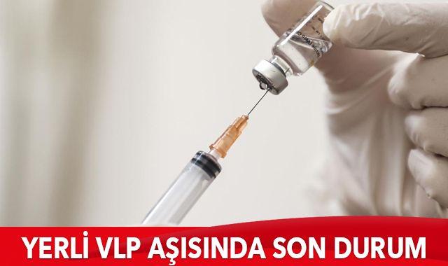Yerli VLP aşısında son durum: Sonbaharda hazır olabilir