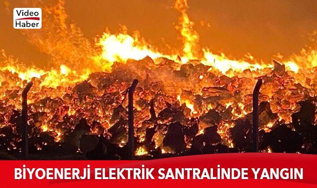 Son dakika: Biyoenerji elektrik santralinde çıkan yangın devam ediyor