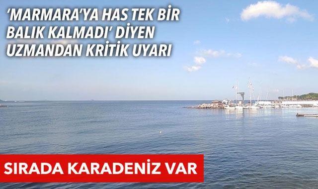 """""""Karadeniz'i de Marmara Denizi gibi kaybedeceğiz"""""""