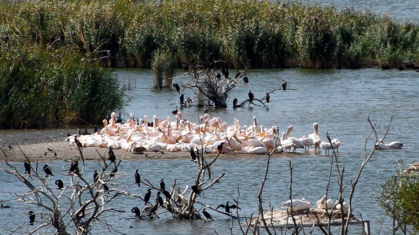 Kuşcenneti Millî Parkı, Balıkesir