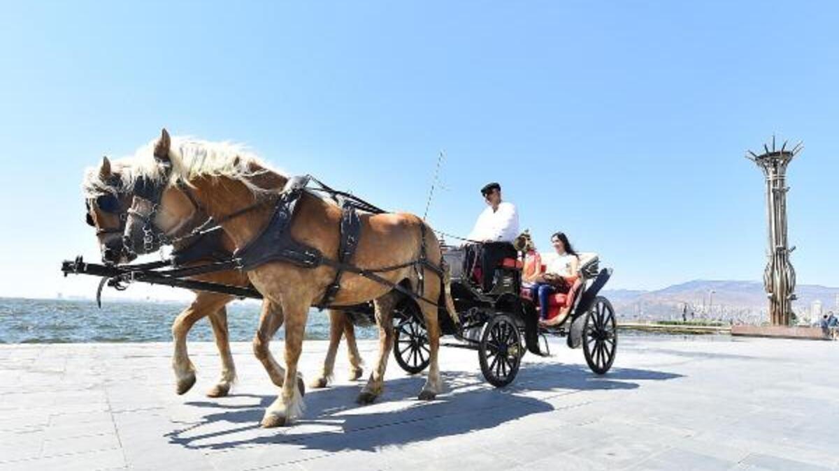 Rüyada At Arabası Görmek Ne Anlama Gelir?